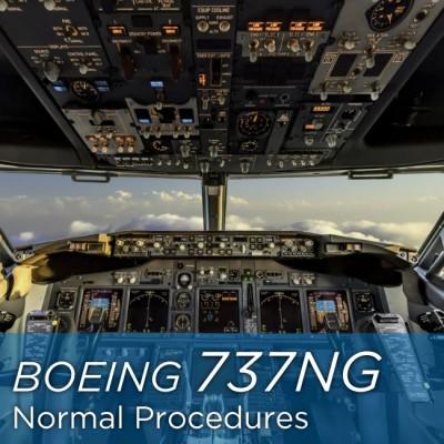 Boeing 737-800 Normal Procedures - cockpit view