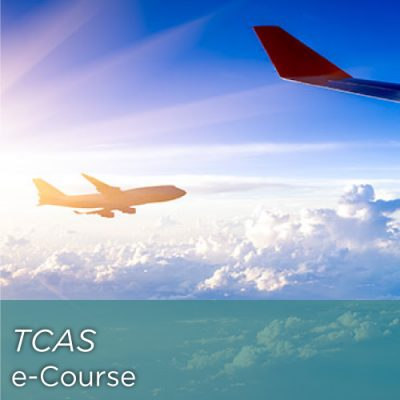 Traffic Collision Avoidance System (TCAS)