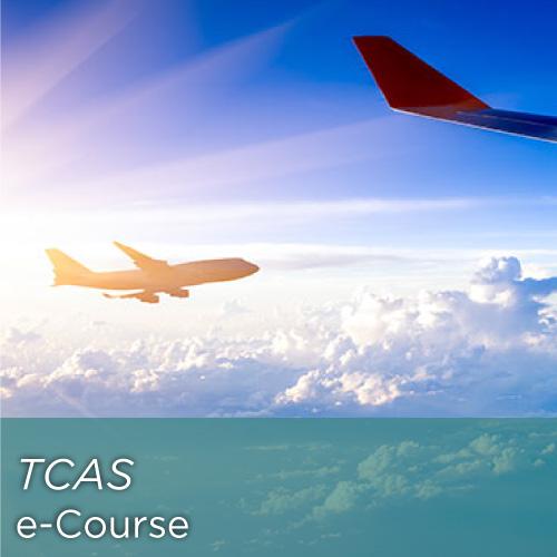 Traffic Collision Avoidance System (TCAS)